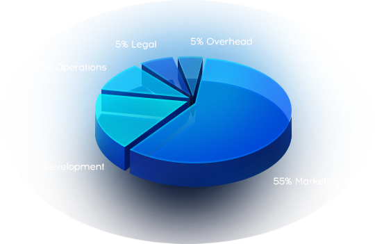 20% Development, 15% Operations, 5% Legal, 5% Overhead, 55% Marketing
